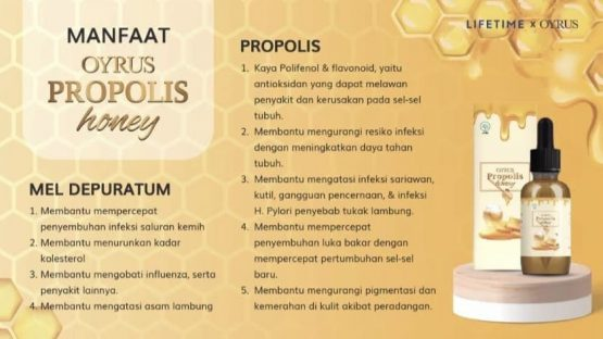 Oyrus Propolis Honey